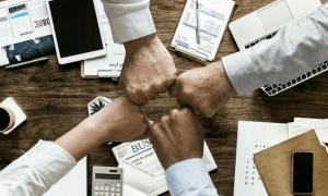Collaboration Network