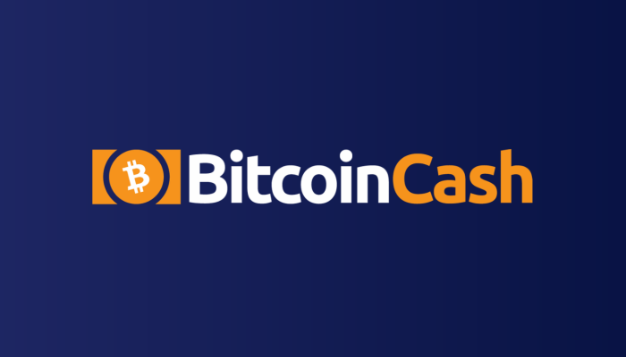 Bitcoin Cash Investment