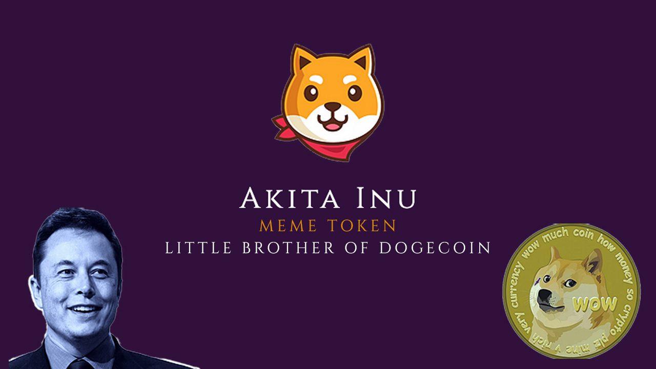 Next Dogecoin