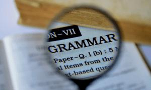 Grammar Checkers