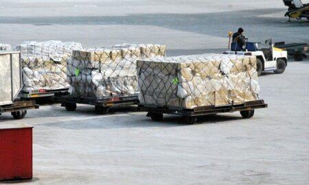 Healthcare Cold Chain Logistics
