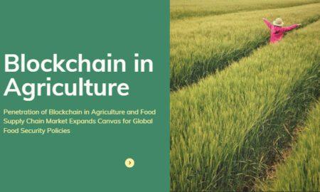 Global Food Security Policies