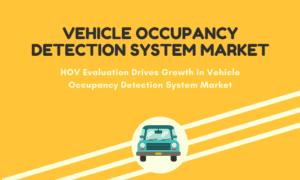 Vehicle Occupancy
