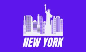 LLC New York State